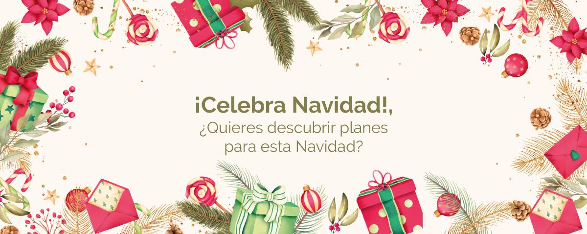 Celebración Navidad